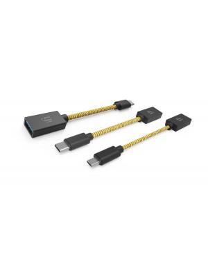 iFi Audio OTG USB