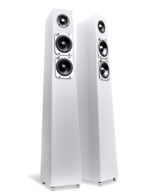 Totem Acoustic Tribe Tower