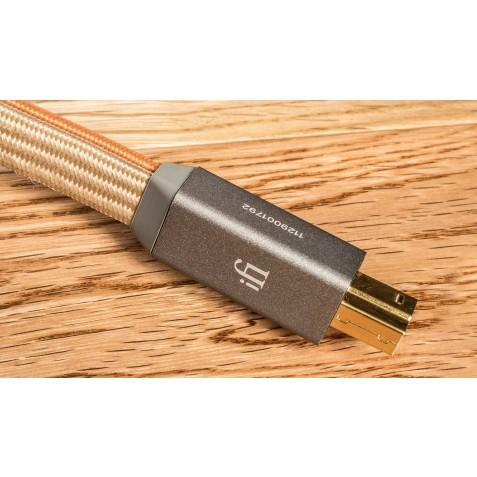 IFI Audio-iFi Audio Gemini3.0-00