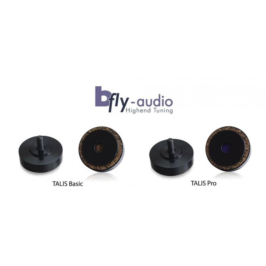 Spatial Audio b-fly