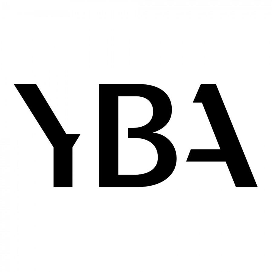 YBA Câble Secteur Diamond