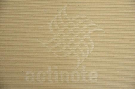 Cable numérique ACTINOTE Digit Sonata AES-EBU au déballage